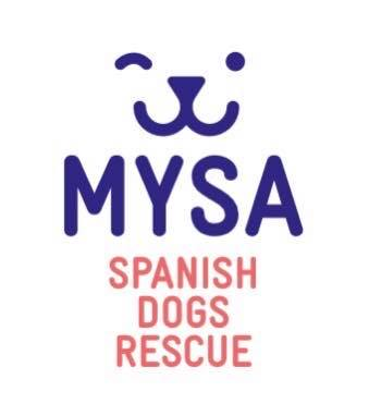 MYSA Spanish dogs rescue