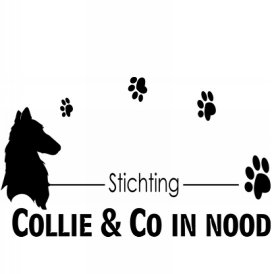 Stichting Collie en Co in Nood